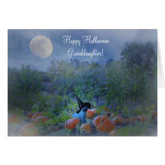 Cute Happy Halloween to Granddaughter Witch Cat Card
