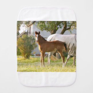 CUTE HORSE FOAL AND MARE BURP CLOTH