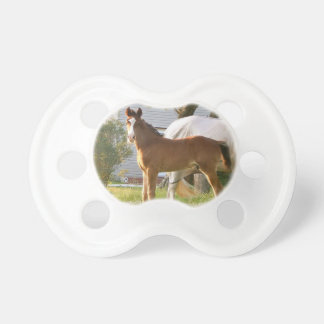 CUTE HORSE FOAL AND MARE DUMMY