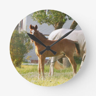 CUTE HORSE FOAL AND MARE ROUND CLOCK