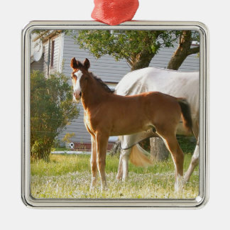 CUTE HORSE FOAL AND MARE Silver-Colored SQUARE DECORATION