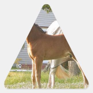 CUTE HORSE FOAL AND MARE TRIANGLE STICKER