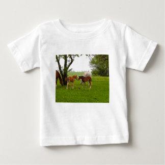 CUTE HORSE FOALS BABY T-Shirt