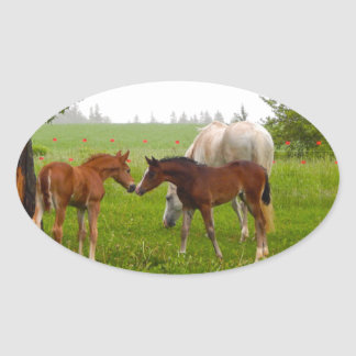 CUTE HORSE FOALS OVAL STICKER