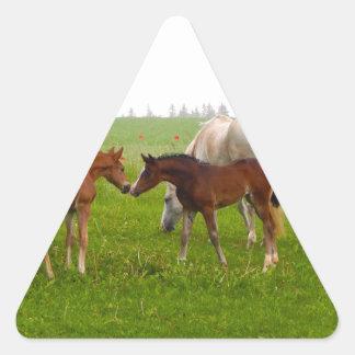 CUTE HORSE FOALS TRIANGLE STICKER