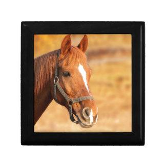 CUTE HORSE GIFT BOX