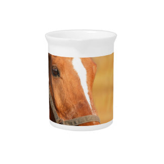 CUTE HORSE PITCHER