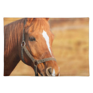 CUTE HORSE PLACEMAT
