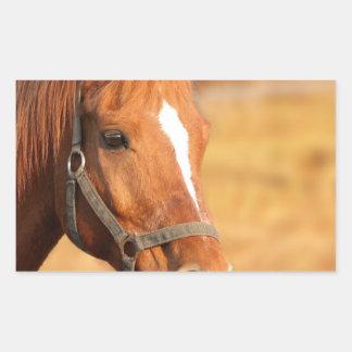 CUTE HORSE RECTANGULAR STICKER