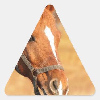 CUTE HORSE TRIANGLE STICKER
