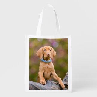 Cute Hungarian Vizsla Dog Puppy Photo - reuseable Reusable Grocery Bag
