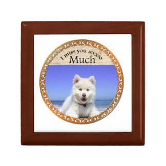 Cute Husky's with blue eye sitting on the beach Gift Box