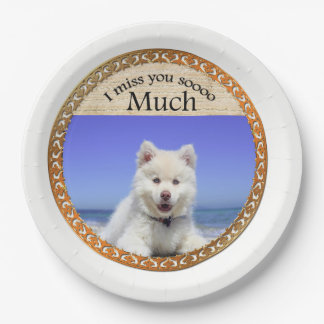 Cute Husky's with blue eye sitting on the beach Paper Plate