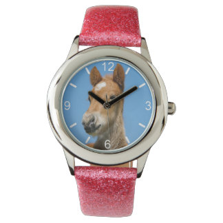 Cute Icelandic Horse Foal Pony Head  - dial-plate Watch