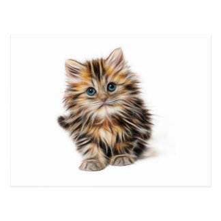 Cute Illustrated Kitten Postcard