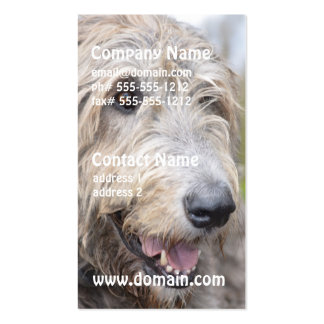 Cute Irish Wolfhound Business Card Template