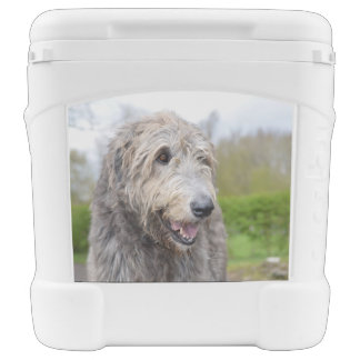 Cute Irish Wolfhound Igloo Rolling Cooler