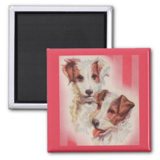 CUTE Jack Russell terriers illustration Magnet