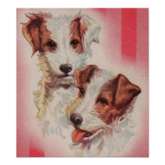 CUTE Jack Russell terriers illustration Poster