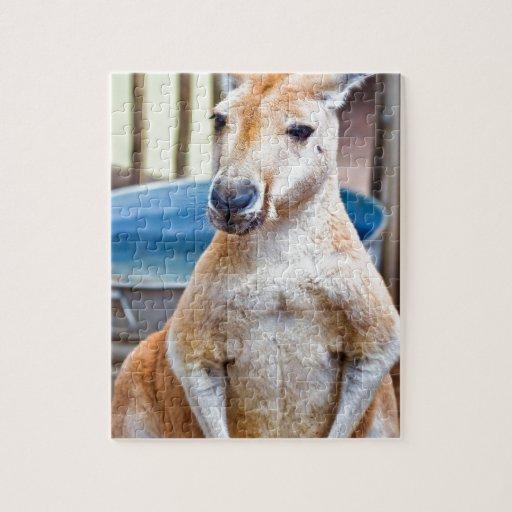 Cute Kangaroo Jigsaw Puzzle