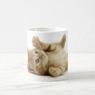 Cute Kitten Basic White Mug