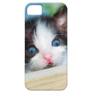 Cute Kitten Cat iPhone 5 5S iPhone 5 Case