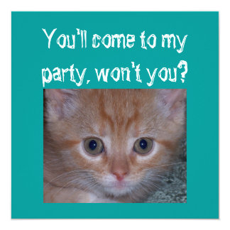 Cute Kitten - Child's Birthday Party Card