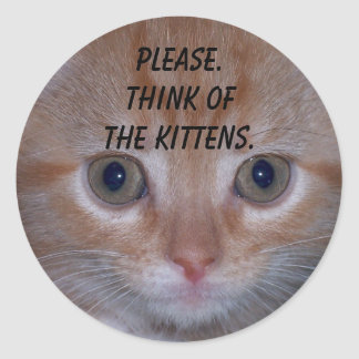 Cute Kitten Classic Round Sticker