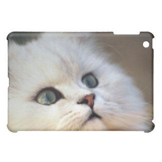 Cute kitten face iPad mini case