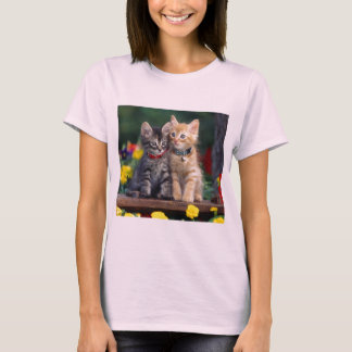 Cute-Kitten flower t shirt
