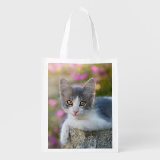 Cute Kitten Fluffy Photo Cat Lovers - reuseable Reusable Grocery Bag