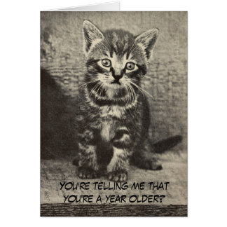 Cute Kitten Happy Birthday Pussycat Greeting Card