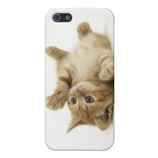 Cute Kitten iPhone 5 Case