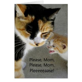 Cute Kitten Mom Happy Birthday Card
