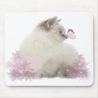 cute kitten mousepad