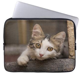 Cute kitten peeking out, Turkey Laptop Sleeve