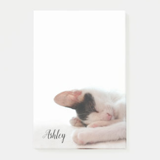 Cute Kitten Photo for Cat Lovers Personalized Post-it Notes