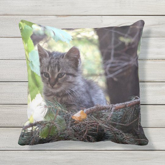 Cute Kitten Photo Throw Cushion