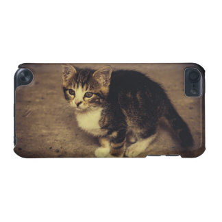 Cute Kitten Photograph, Baby Animal iPod Touch 5G Cover