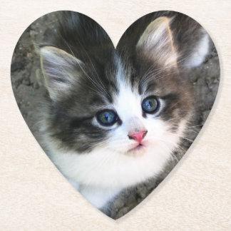 CUTE Kitten Portrait Paper Coaster