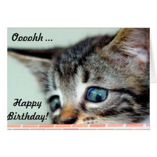 Cute Kitten says happy Birthday Greeting Card