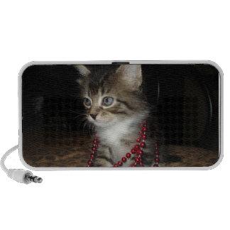 Cute Kitten Speakers