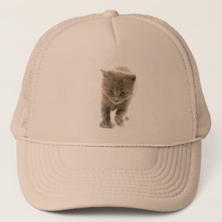 cute kitten trucker hat