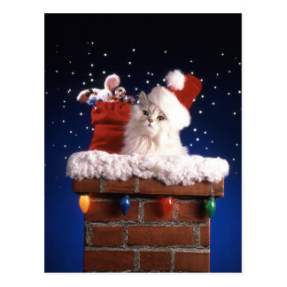 Cute kitten with Santa hat Postcard
