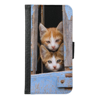 Cute Kittens Blue Vintage Window Animal Photo - Samsung Galaxy S6 Wallet Case