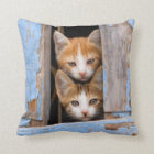 Cute Kittens in a Vintage Window, Square Cushion
