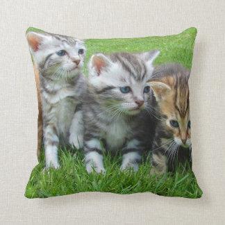 Cute Kittens Throw Pillow