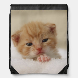 Cute kitty drawstring bag