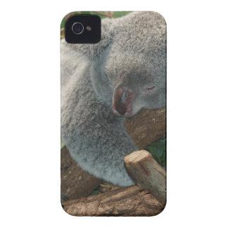 Cute Koala Bear Destiny Nature Aussi Outback Case-Mate iPhone 4 Case