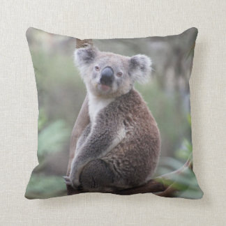 Cute Koala Bear in a Tree Animal Throw Pillow